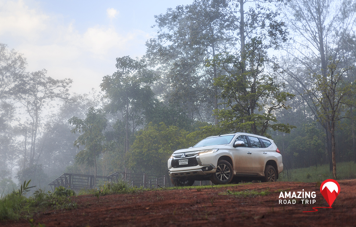View Wildlife in Their Natural Habitat at Thung Salaeng Luang in Petchaboon  with  All New Mitsubishi Pajero Sport