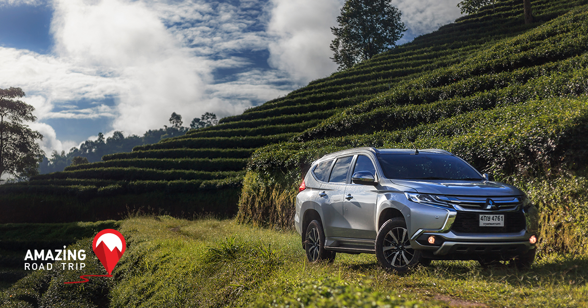 Inhale the Fresh Aroma of Quality Oolong Tea amidst a View Rivaling That of Switzerland with the All New Pajero sport